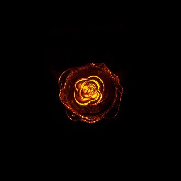 Pelsan Roza Gece Lambası - Amber
