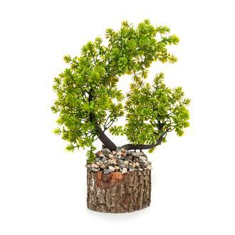 Mondecor Kütük Saksıda Bonsai Ağaç