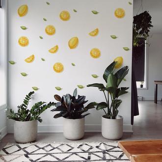 Artikel Limon ve Yapraklar İlüstrasyon Duvar Sticker