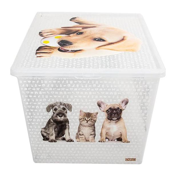 Qutu Lighte Box Cat and Dog Oyuncak Kutusu