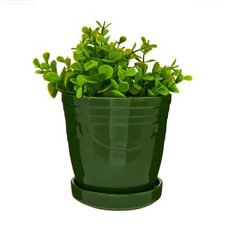 Ang Design Seramik Tabaklı Yeşil Saksı